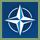 Глава коалиции НАТО (1)